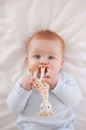 Софи жирафчето 21 см